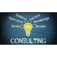 PDF Consulting Services